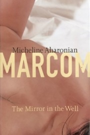 The Mirror in the Well
